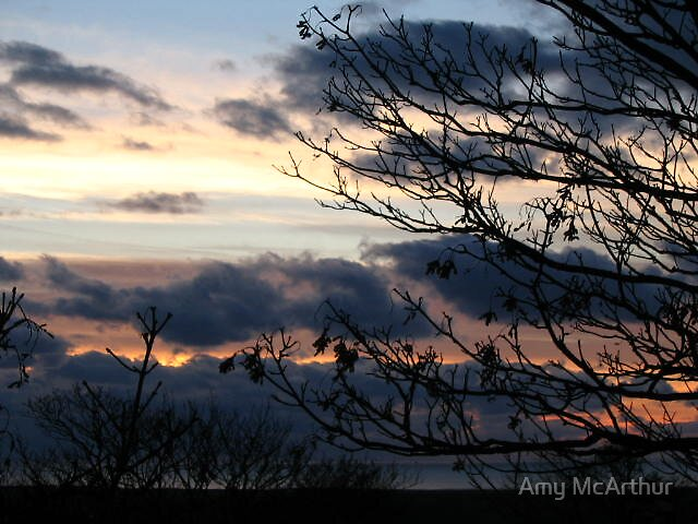 Taken Away by Amy McArthur