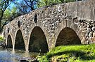 Historic Meadows Road Bridge by DJ Florek