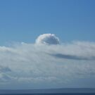 Island in the Sky (San Juan Island, Washington) by Anthony DiMichele