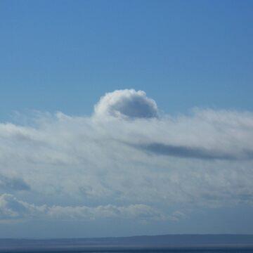 Island in the Sky (San Juan Island, Washington) by antoniozart