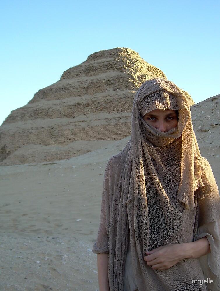 Veiled in Sand by orryelle