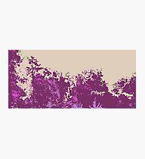 Pink Trees Photographic Print