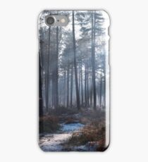 winter park trail iPhone Case/Skin