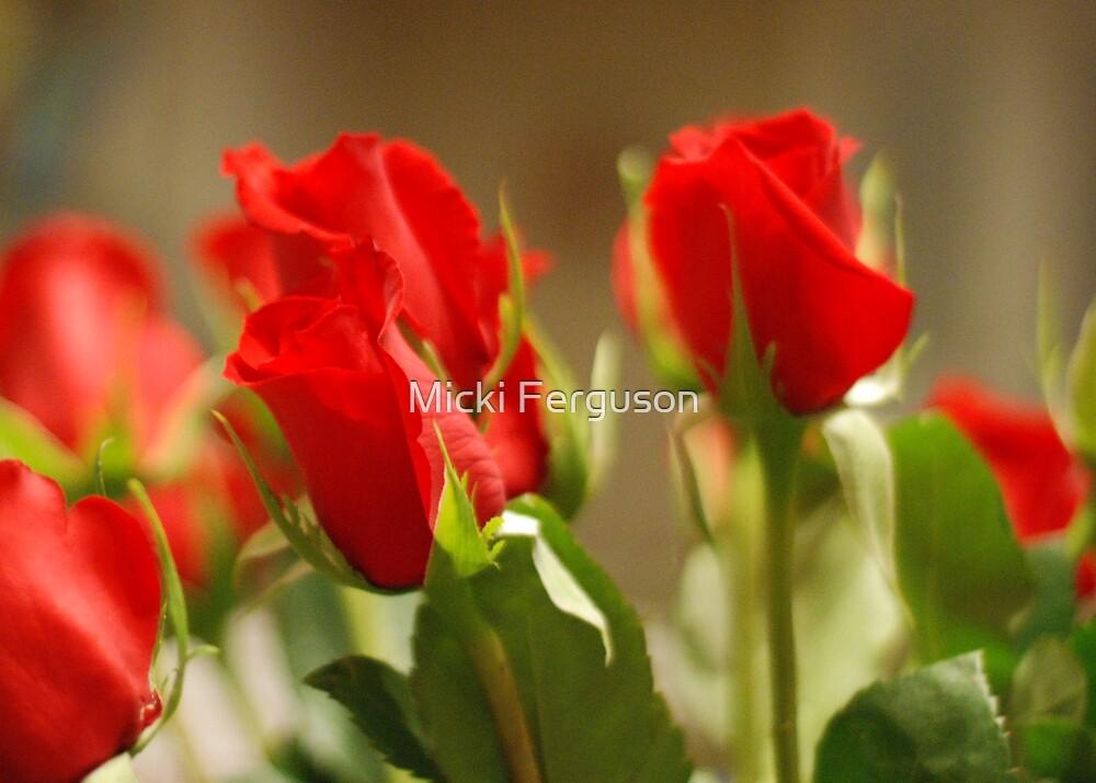 roses by Micki Ferguson