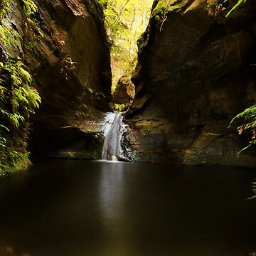Twister Canyon, Blue Mountains by roger