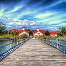 Bare Foot Landing Walkway by TJ Baccari Photography
