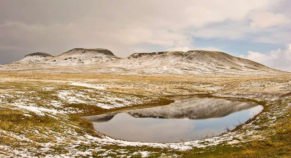 Pond Panorama by nituathaill