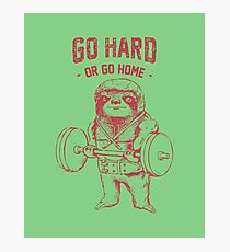 Go Hard Or Go Home Sloth Photographic Print