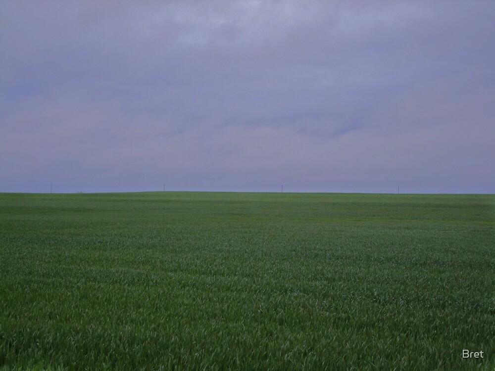 April Wheat by Bret