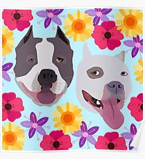 Pit Bulls With Flowers  Poster