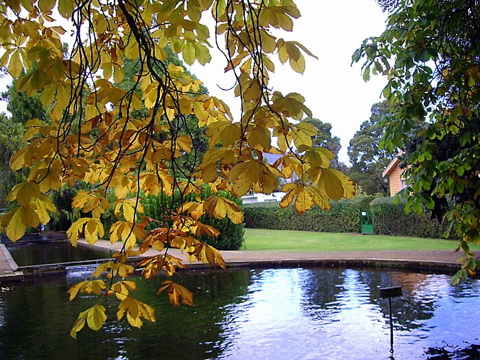 """Autumn at the Ponds. . ."" by lurline"