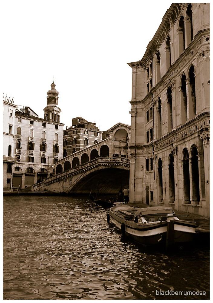 Venezia by blackberrymoose