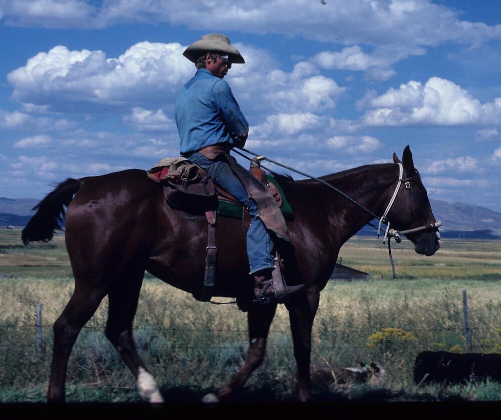 Montana Cowboy by bertspix