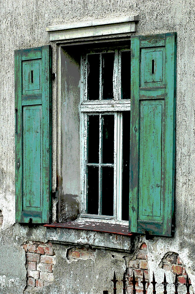 Green shutters by peperkoorn