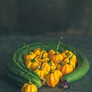 Still life with zucchini, peppers and pansies. by alan shapiro