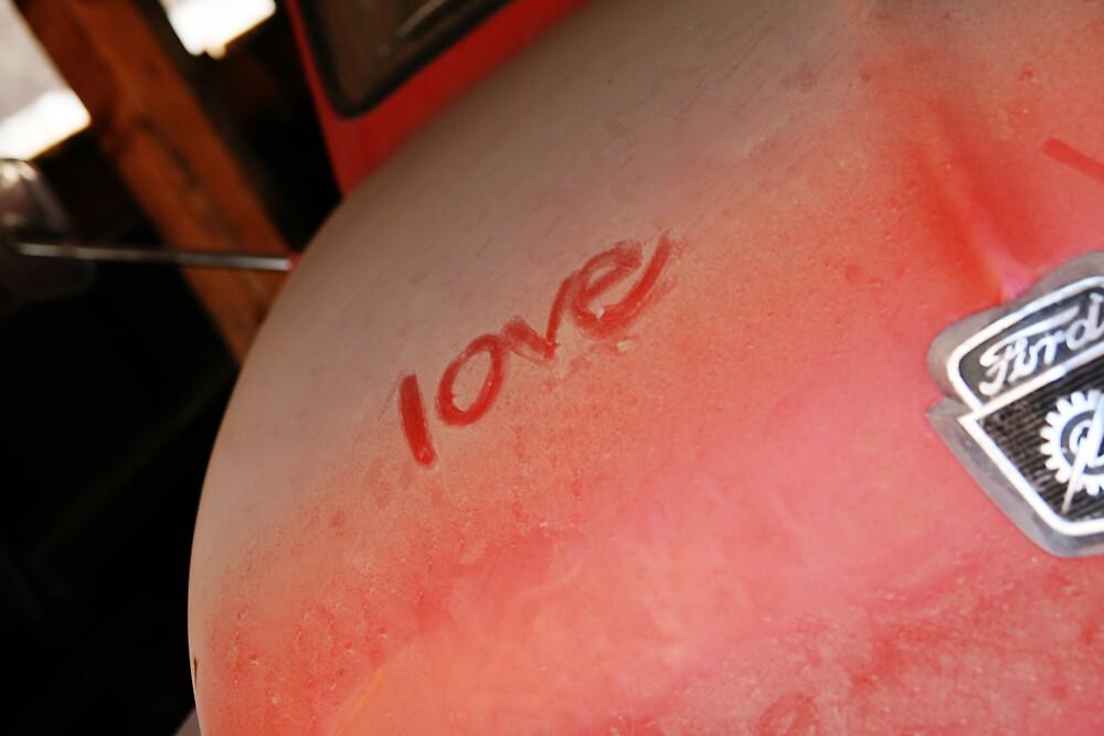 Love in Dust by Janina