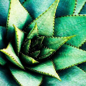 Aloe Plant by Schyljuk
