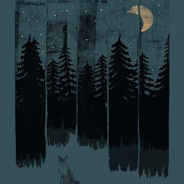 Ein Fuchs in der wilden Nacht von ndtank