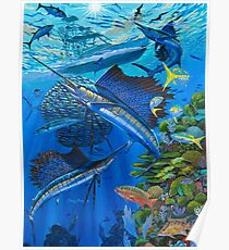 Sailfish Reef Poster