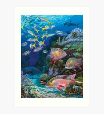 Mutton Reef Art Print
