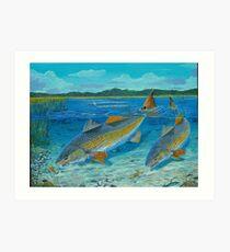 Redfish Creek Art Print