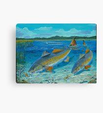 Redfish Creek Canvas Print