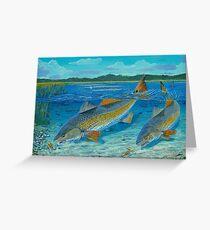 Redfish Creek Greeting Card