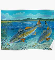 Redfish Creek Poster