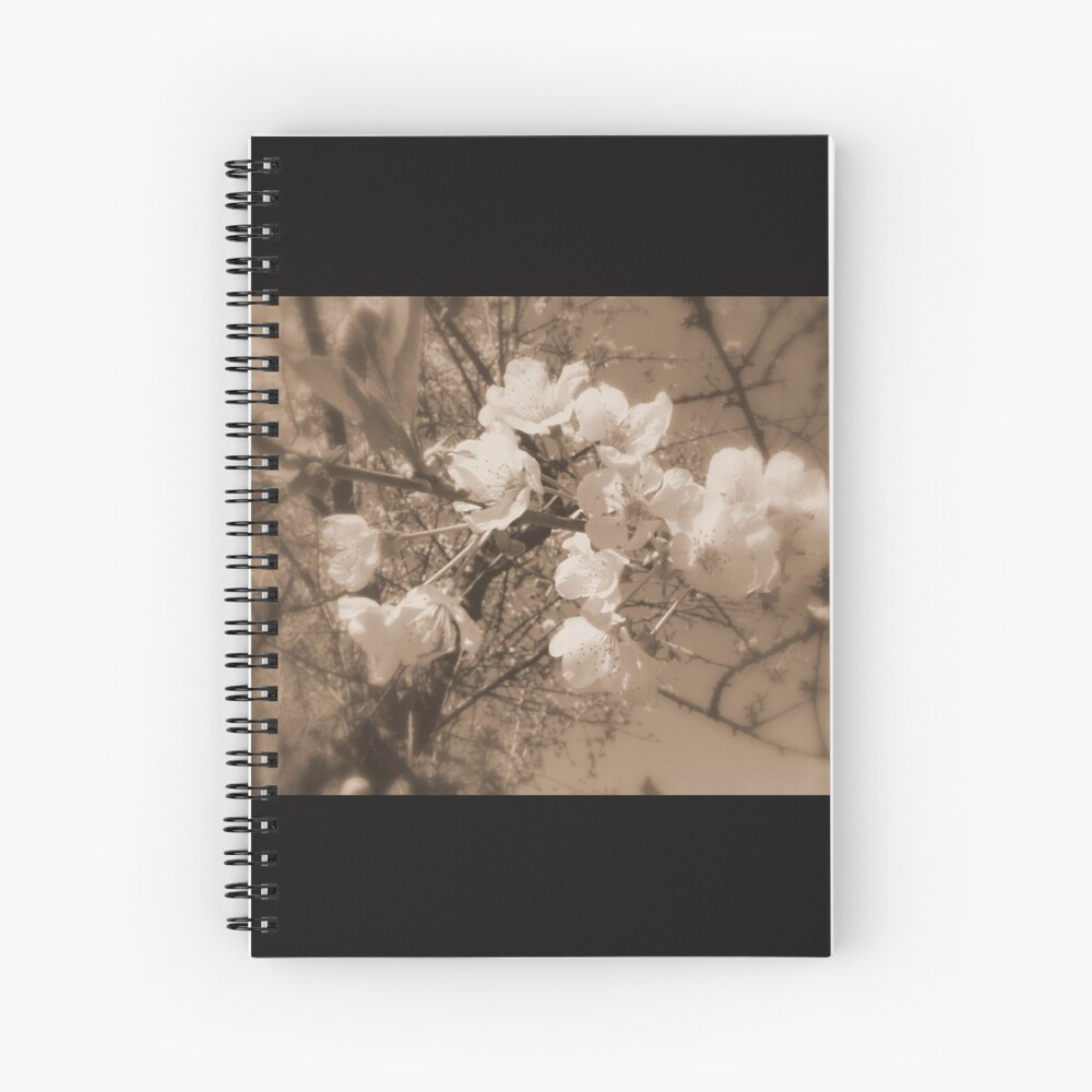 cherry blossoms in the sky, sepia Spiral Notebook
