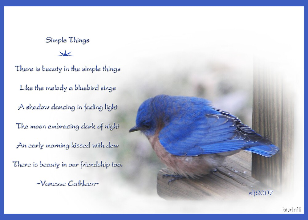 Simple Things by budrfli