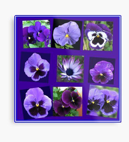 All Blues - Summer Flowers Collage Metallbild
