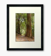 Mountain Greenery Framed Print