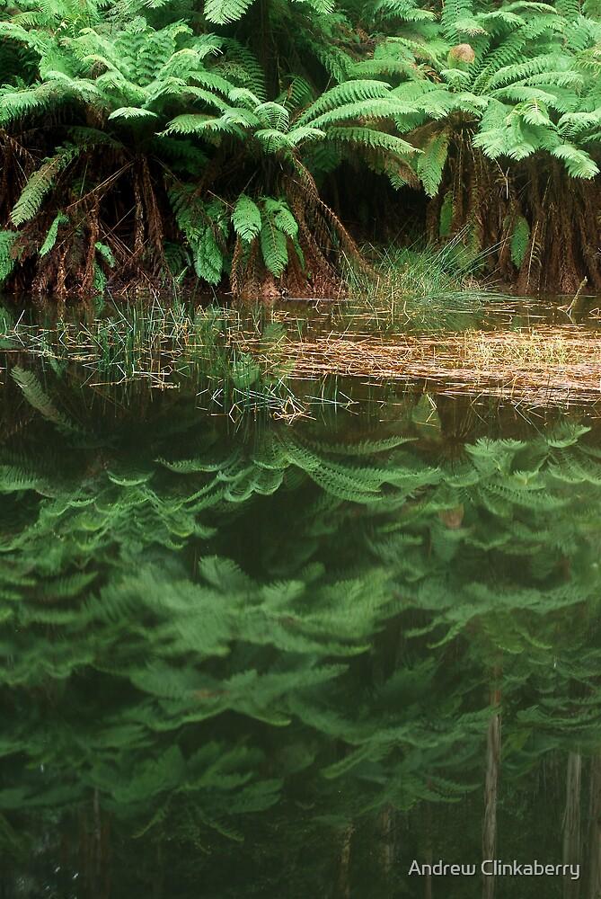 Lake Elizabeth Billabong by Andrew Clinkaberry