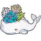 Whale pot & succulents - 4erta by BeeHappyShop