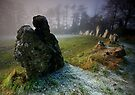 the Rollright Stones by Angie Latham