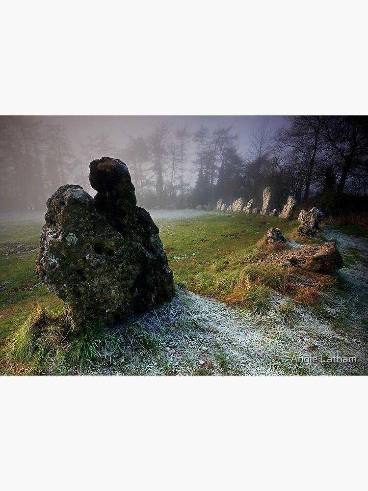 the Rollright Stones by AngelaBarnett