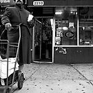 Harlem by Elodie