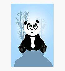 Panda Girl - Blue Photographic Print