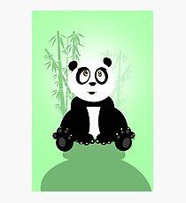 Panda Girl - Green Photographic Print