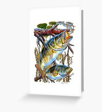 Bass Undercover Greeting Card