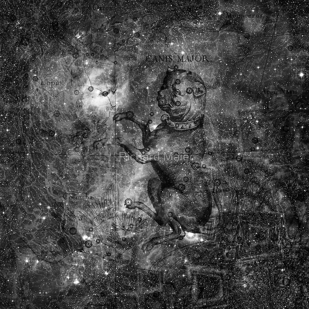 When The Stars Are Right - The Seagull Nebula In Canis Major (b&w version) by Richard Maier