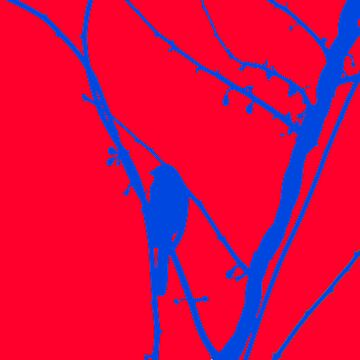 Bird 19 by digiphotos