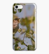 common nightingale  (Luscinia megarhynchos) - Wielikat ponds, Poland iPhone Case/Skin