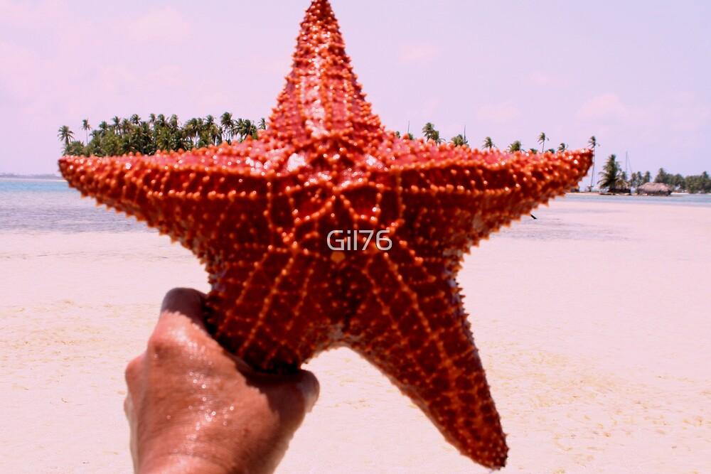 Starfish by Gil76