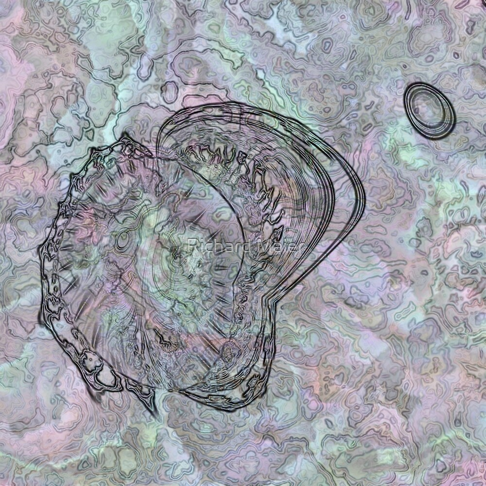 Reef Amoeba 3 by Richard Maier
