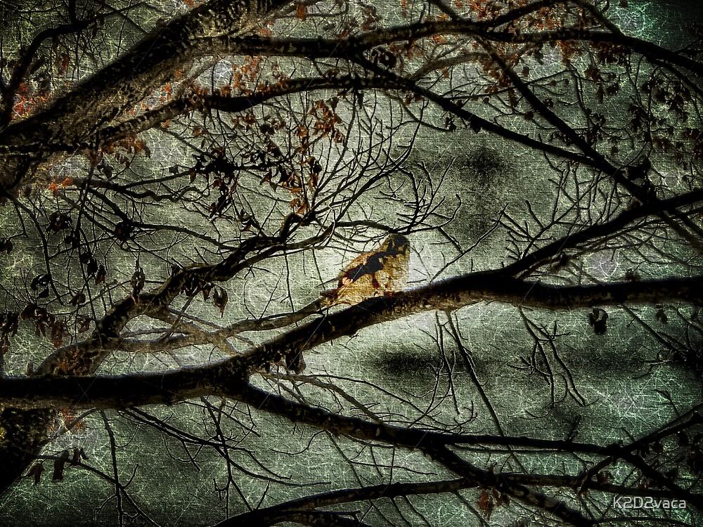 Bringer of Doom...to Moths by K2D2vaca