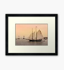 Morning of Glory 2 - Sail Boston 2017 Framed Print