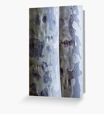 Spotted Gums Greeting Card