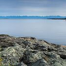 Cadboro Bay by Carrie Cole
