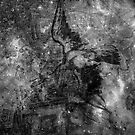 When The Stars Are Right - The North America Nebula in Cygnus (b&w version) by Richard Maier